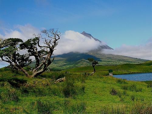 Azores Romanticas