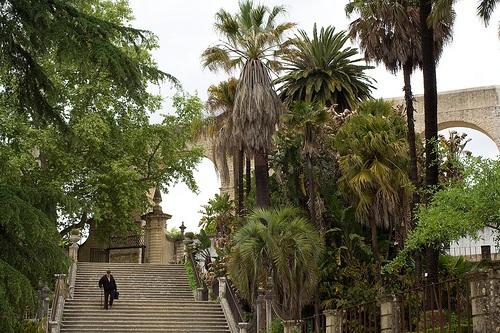 Jardin Botanico de Coimbra