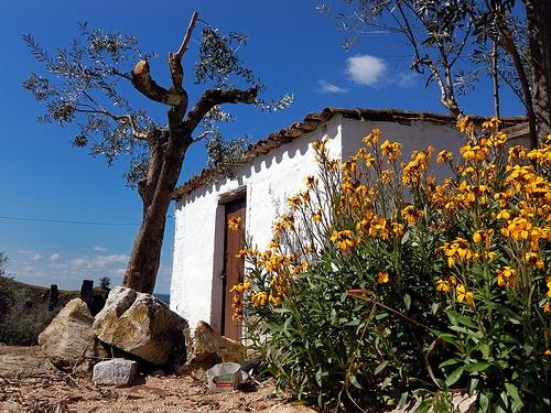 Arquitectura tipica en Alegrete