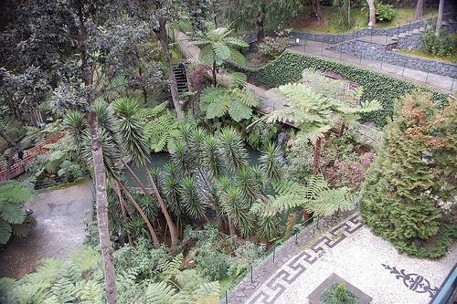 Mosaicos en Monte Palacio