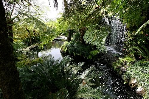 Jardin Monte Palacio