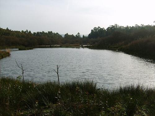 Laguna de Pedro de Arcos