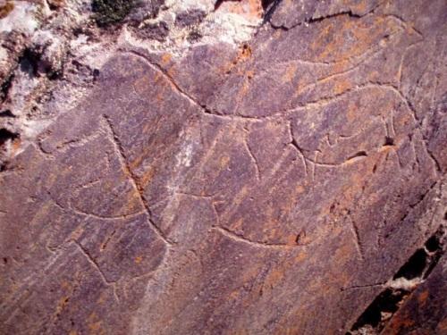 Arte rupestre en el Valle del Rio Coa