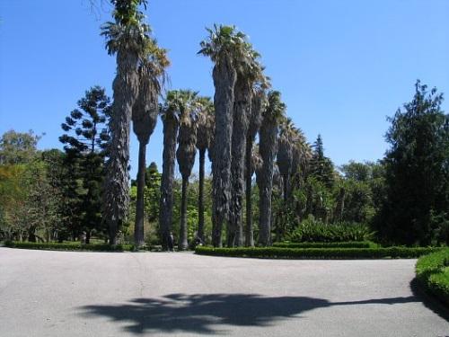 Jardin Botanico Tropical de Lisboa